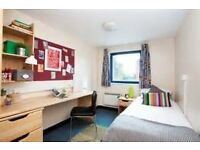 ROOM AVAILABLE-Camden Court- Flat 10, room 1. - Northumbria University