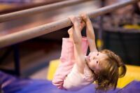 Non Profit North Edmonton Gymnastics Club kijiji site!