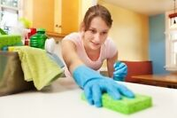 Home Cleaning Experts