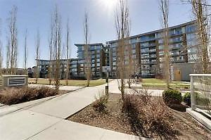 LUXURIOUS ONE BEDROOM PENTHOUSE IN CENTURY PARK!