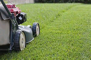Grass cutting  (student housing contracts)