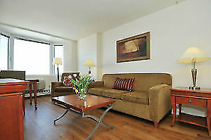 Beautiful Fully Furnished  - 2 bedroom apartment - Unit 1919