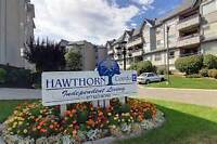Beautiful Hawthorn Park Condo