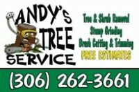 Tree Removal by Andy's Tree Service