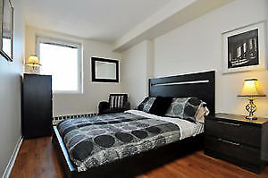 1 Bedroom Apartment - Available Dec 1st