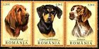 Romania Dogs Stamps