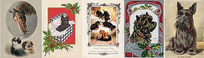 Dog Card and Print Shop