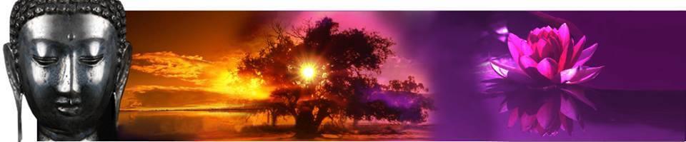 lichtpunkt-dachau