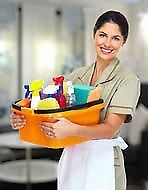 Cleaning Lady Services
