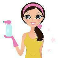 EXPERIENCED CLEANER (or two cleaners) available! West Perth Perth City Preview