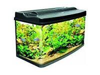Aquarium / Tank wanted
