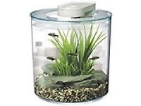 10L fish tank.