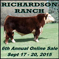 Polled Herefords - Internet Auction