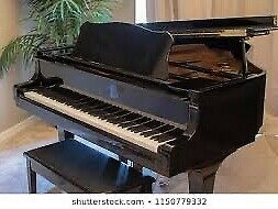 1-1 Piano Lesson for all ages at Sentosa