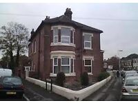 Lovely Studio Flat in Portswood - PRIVATE LANDLORD