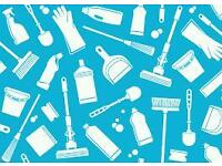 **Domestic/comercial cleaner**