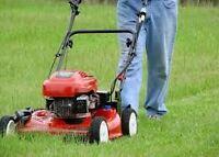 Service de tonte de pelouse et d entretien de terrain