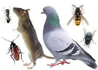 Pest And Animal Control 24 Hours • Full Warranty • 35% OFF GTA