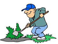 gardener, garden service 24/7