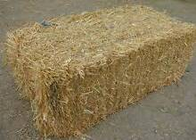 Oaten Hay - Small Squares - Baled Oct 2015 Cressy Colac-Otway Area Preview