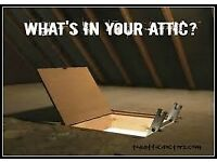 Free Attic clearance