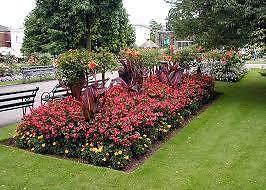 4U Services Garden  Maintenance Clayton Monash Area Preview