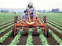 Farm Assistant'