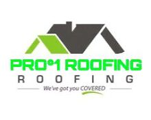 Pro°1 Roofing . Installer Roof Tiling,Tin ,Gutters,Downpipes Canning Vale Canning Area Preview