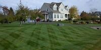 Lawn cutting service Ancaster, Dundas and area.
