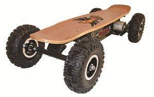 Electric Skateboard 800w