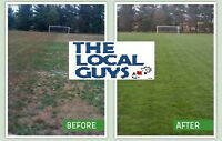 The Local Guys  Landscaping - thelocalguys.ca