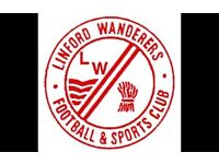 LINFORD WANDERERS U13's looking to add players