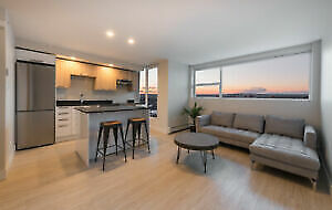 NEW, CLEAN AND BEAUTIFUL 1 BEDROOM SUMMER SUBLET (MAY-AUGUST)