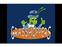 Ladies football players wanted! Any women 16+ for new Chantry Grasshoppers Ladies team