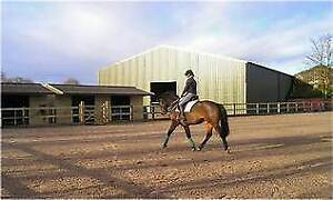 EQUESTRIAN CENTRE WANTED $1,000,000 budget