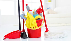 Residential and Commercial Home Maintenance Services London Ontario image 2