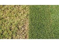 Lawn Repair Specialist- at a fraction of cost of turf or re-seeding