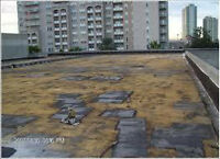 Flat Roofing - repair - recovery - Free Estimates