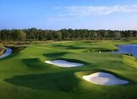 TPC Golf Vacation (with golf membership transfer)