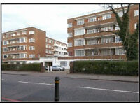 Cosy 1-bed ground floor flat in stylish 30s block. Private landlord - no fees