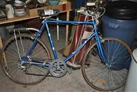 Raleigh 5 Speed Bicycle for 35.00 obo