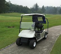 Golf cart sightseeing electric vehicle Eastwood Ryde Area Preview