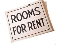 2 rooms available in the LU1 area - close to town!