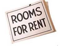 Room for rent for goans