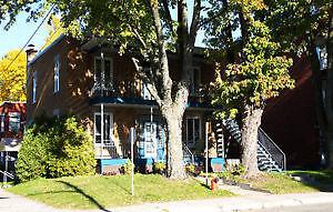 Limoilou 3 1/2 libre immédiatement!!! Québec City Québec image 5