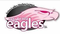 LADIES HOCKEY LOOKING FOR PLAYERS