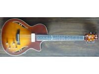 Crafter SAT-TMVS for sale, with hard case, 2 Months old. Professional set up.