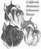 California Miniature Schnauzer Rescue
