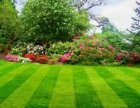 Landscaping and Handyman Services