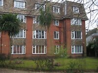 Eastcliff: 1 bedroom furnished, south facing, light, airy flat, gardens, parking, close to sea